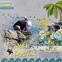 Rock-Pooling_webjmb.jpg
