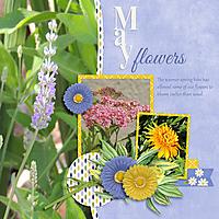 0-May-flowers.jpg