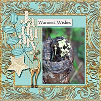 January-warm-wishes_web.jpg