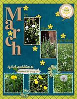 March-in-my-yard-small.jpg