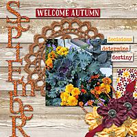September_Flowers.jpg