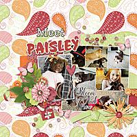 2-25-17-Meet-Paisley.jpg