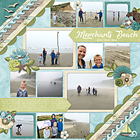 Merchants-Beach-2017.jpg