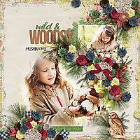AHD-HSA-wild-and-woodsy-17Nov.jpg
