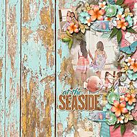 HSA_aimeeh_seaside_robin_web.jpg