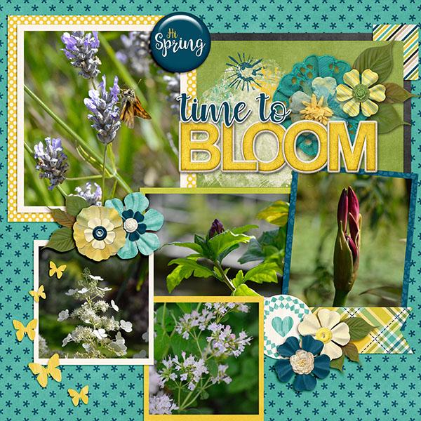 Spring Blooms 2016
