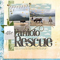 web_bison-rescue-HIstyle.jpg
