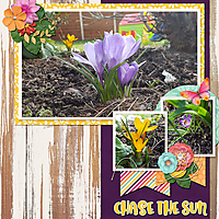 chase-the-sun.jpg