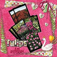 Tulips_1.jpg