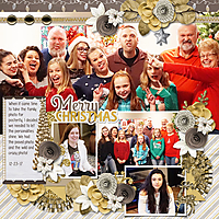 12-23-17-Wild-n-Crazy-Family.jpg