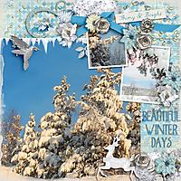 Beautiful-winter-days.jpg