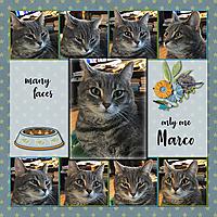 manyfaces.jpg