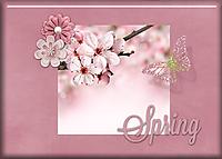 Spring77.jpg