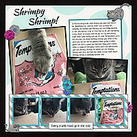 Shrimpy-shrimp.jpg