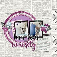1-15-18-Curiosity-and-the-cat.jpg