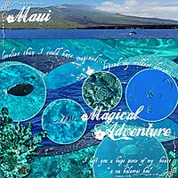 Survivor-Week-5-1st_trip_to_Hawaii.jpg