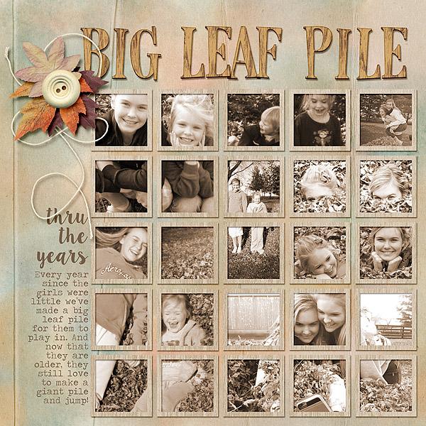 Big Leaf Pile