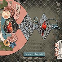 Born-To-Be-Wild-600x600.jpg