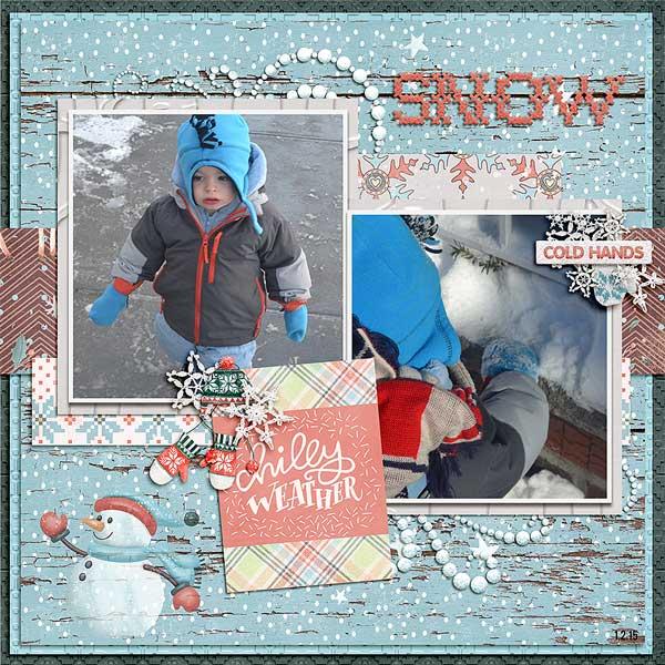snowjan2015
