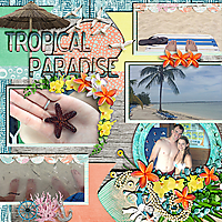 Tropical-Paradise-2-Layout-web.jpg