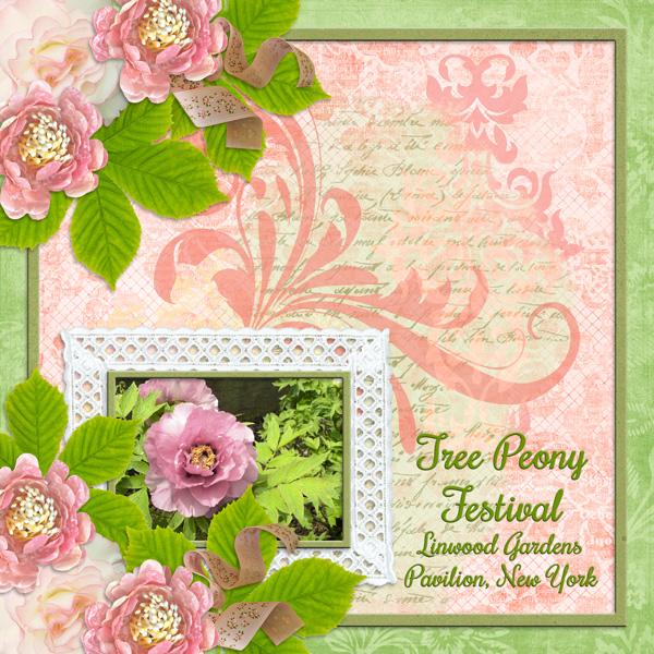 Tree Peony Festival