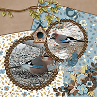 600-adbdesigns-bluebird-happiness-pia-02.jpg