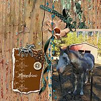 600-adbdesigns-horse-carriage-days-nancy-01.jpg