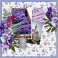 600-adbdesigns-provence-lavender-pia-01.jpg