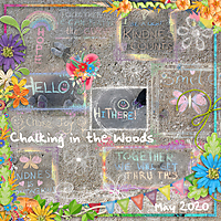 20200500-Chalking-in-the-Woods-20200622.jpg