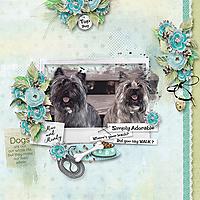 600-Snickerdoodles-Love-my-Dog-norma-01.jpg
