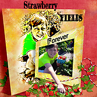 Strawberry-Fields.jpg