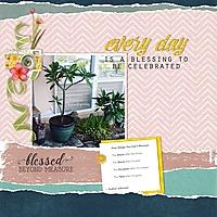 Every-day-blessings-webv.jpg