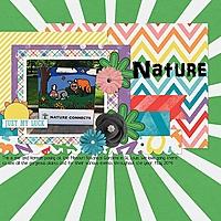 Nature19.jpg