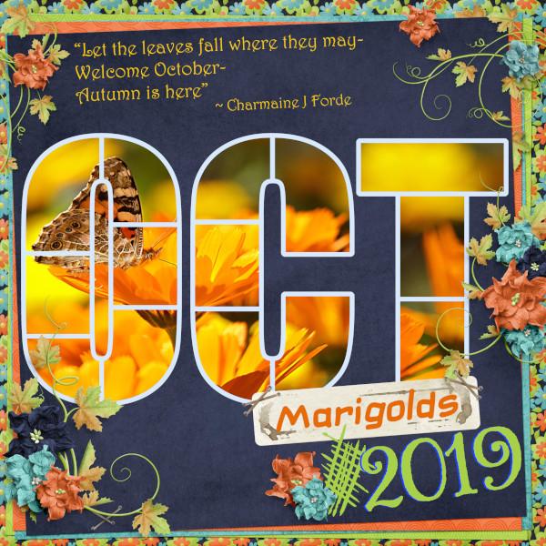October Marigolds
