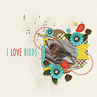 0-I-Love-Birds.jpg