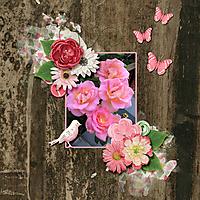 Summer-Blooms.jpg
