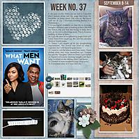 Week-372.jpg
