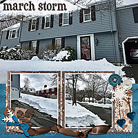 marchstorm18web.jpg