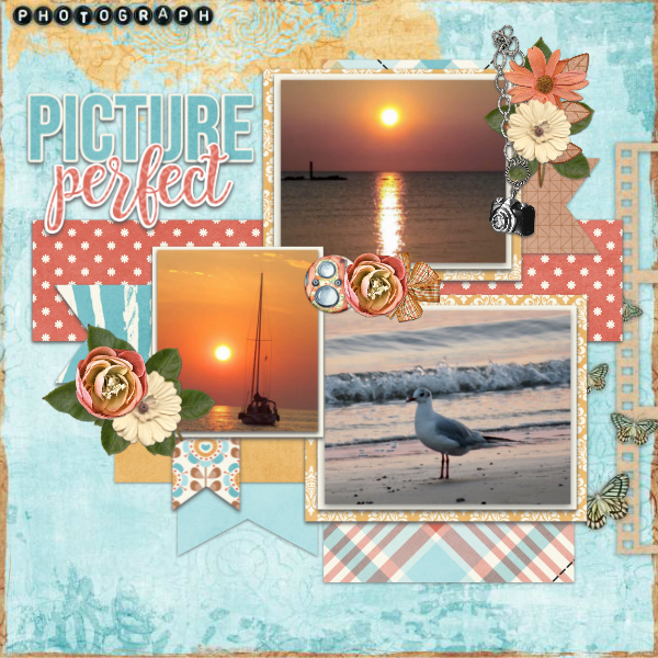 Picture_perfect6