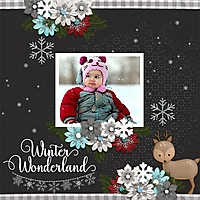 WinterWonderland12.jpg