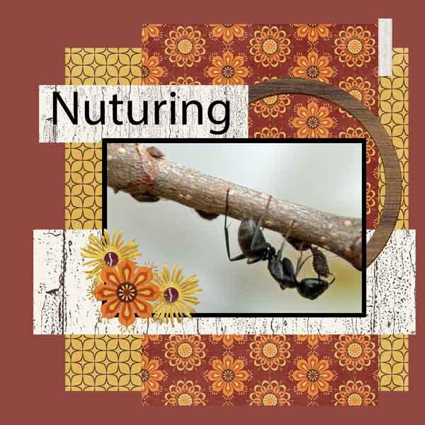 Nuturing