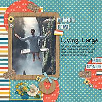 Living_Large.jpg