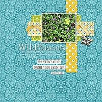 Wildflowers9.jpg