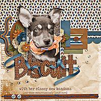 Biscuit_webjmb.jpg