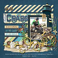 Finding-Crabs_webjmb.jpg