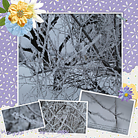 sbd_layout12-DD-0419-web.jpg