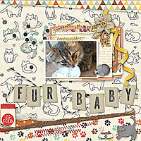 Fur_Baby6.jpg