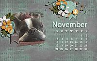 November15.jpg