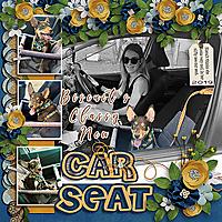 Biscuits-New-Car-Seat_webjmb.jpg