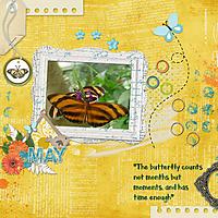 Butterflies_600.jpg